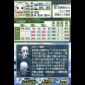 NDS 版